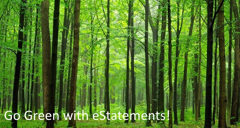 Electronic Statements